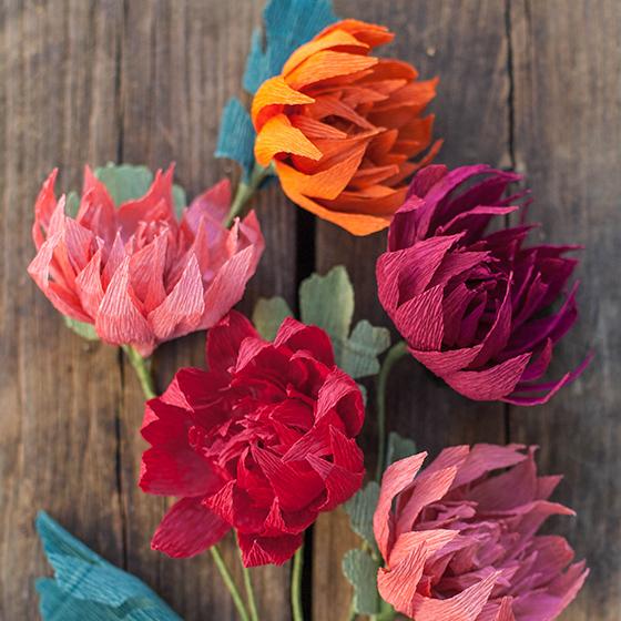 Duplex paper rose flower vatozozdevelopment duplex paper rose flower mightylinksfo