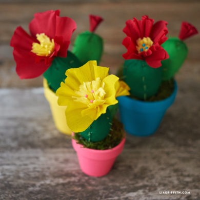 paper potted cactus pdf template lia griffith