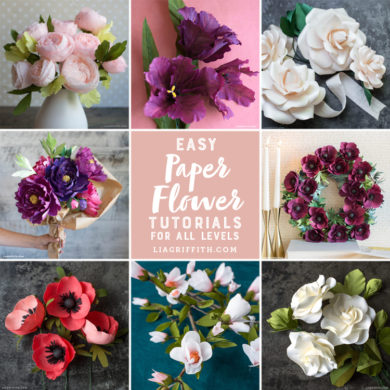 135 paper flowers with diy templates and tutorials paper flower tutorial videos roundup mightylinksfo