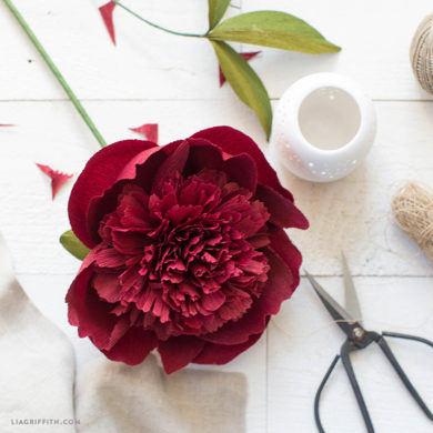 160 stunning crepe paper flowers with easy diy tutorials september member make challenge crepe paper red charm peony crepe paper flowers mightylinksfo